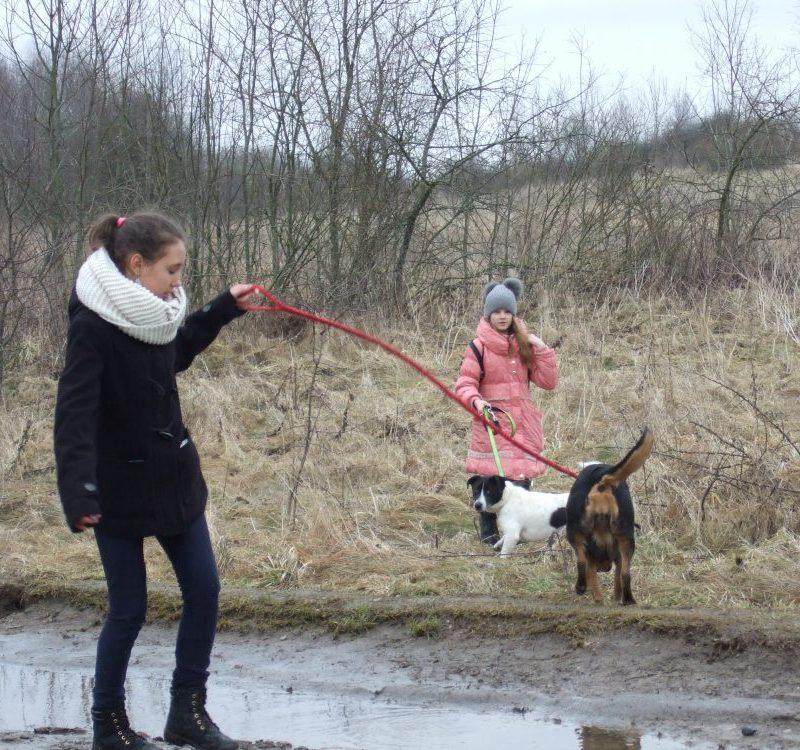 """5A klasės mokiniai lankėsi Ukmergės gyvūnų globos namuose """"Klajūnas"""""""